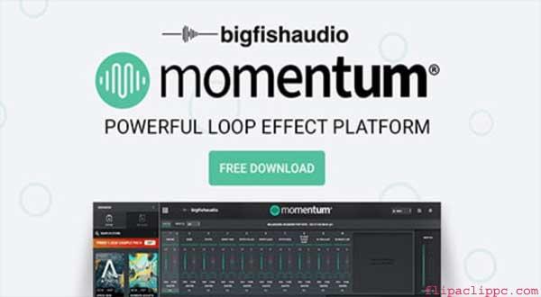 Momentum Camera on PC