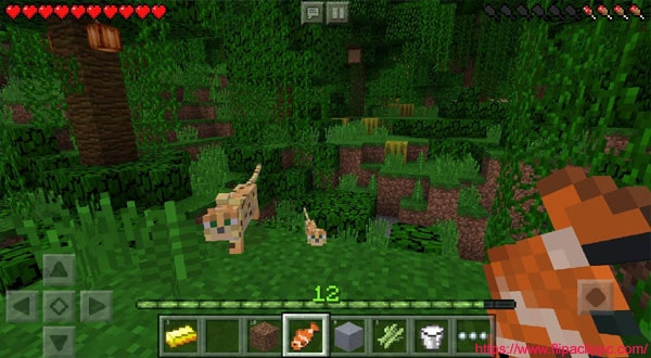 Features of the HiPStore Minecraft
