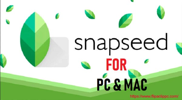 snapseed for pc windows 10 download